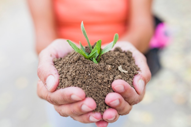 crop-hands-holding-soil-and-sprout_23-2147779018